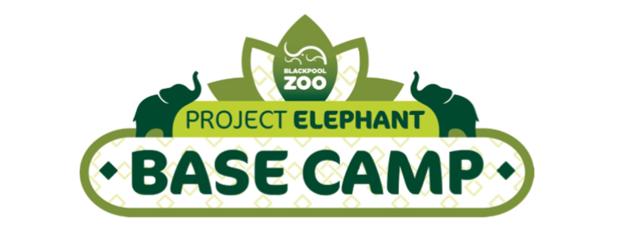 Project Elephant Base Camp at Blackpool Zoo